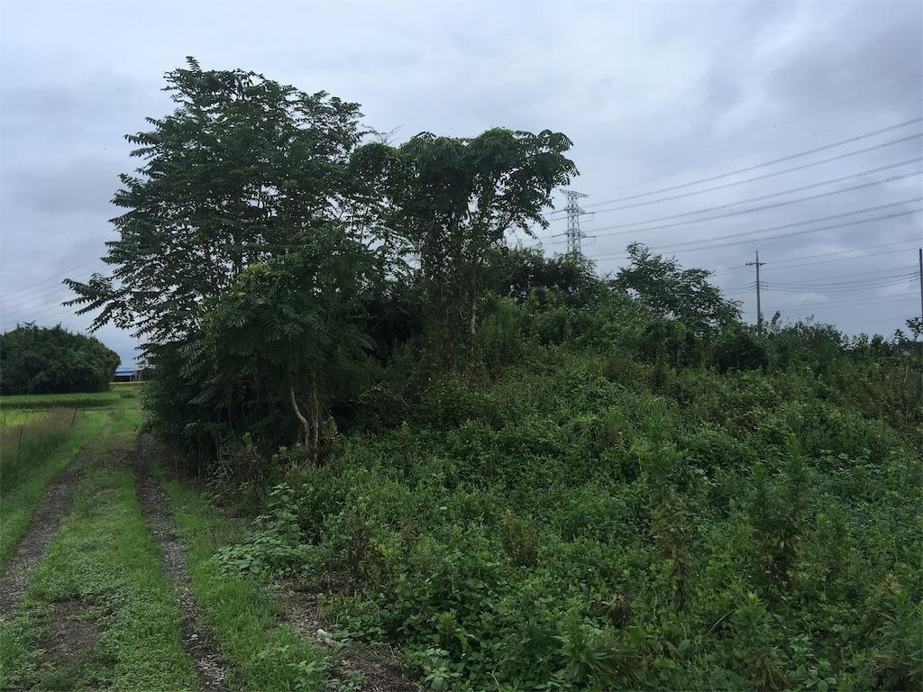 f:id:kofunmeguri:20200918221023j:image