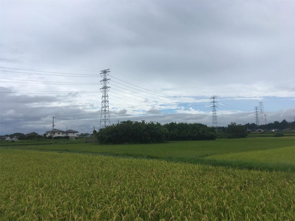 f:id:kofunmeguri:20200918223043j:image