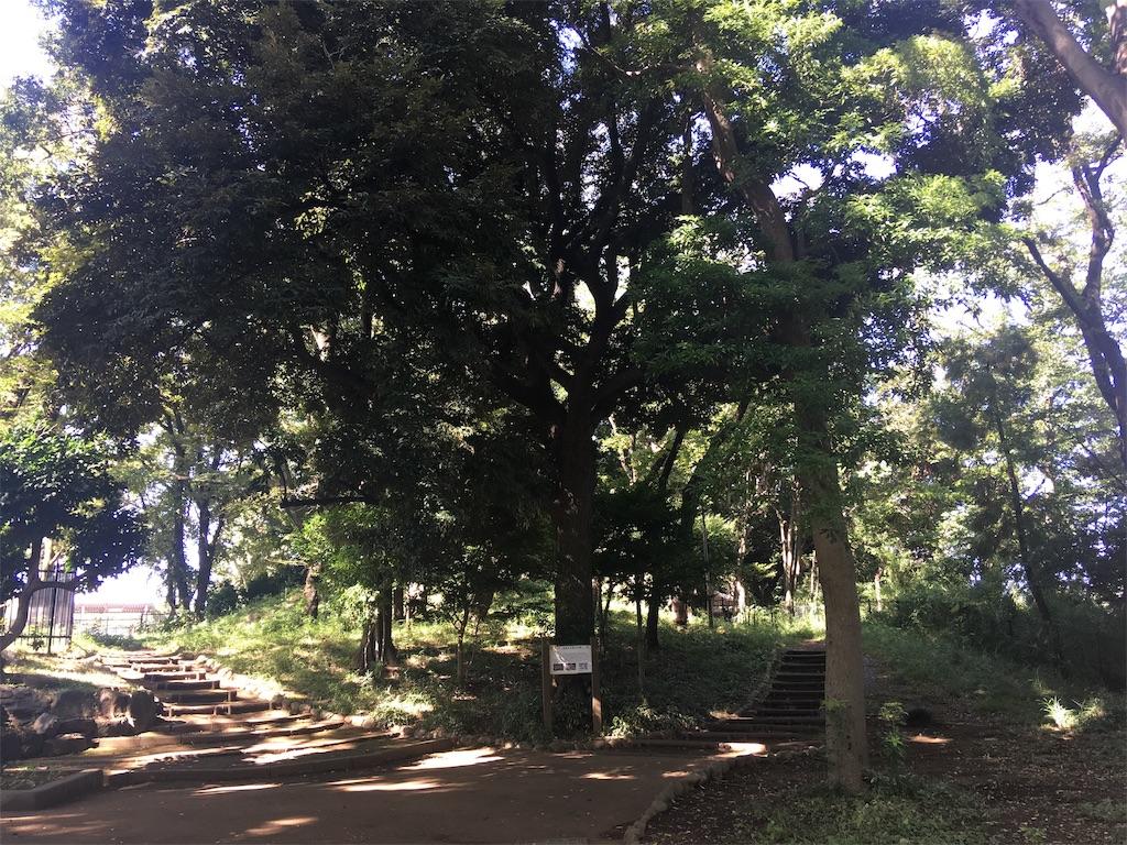 f:id:kofunmeguri:20201025142429j:image