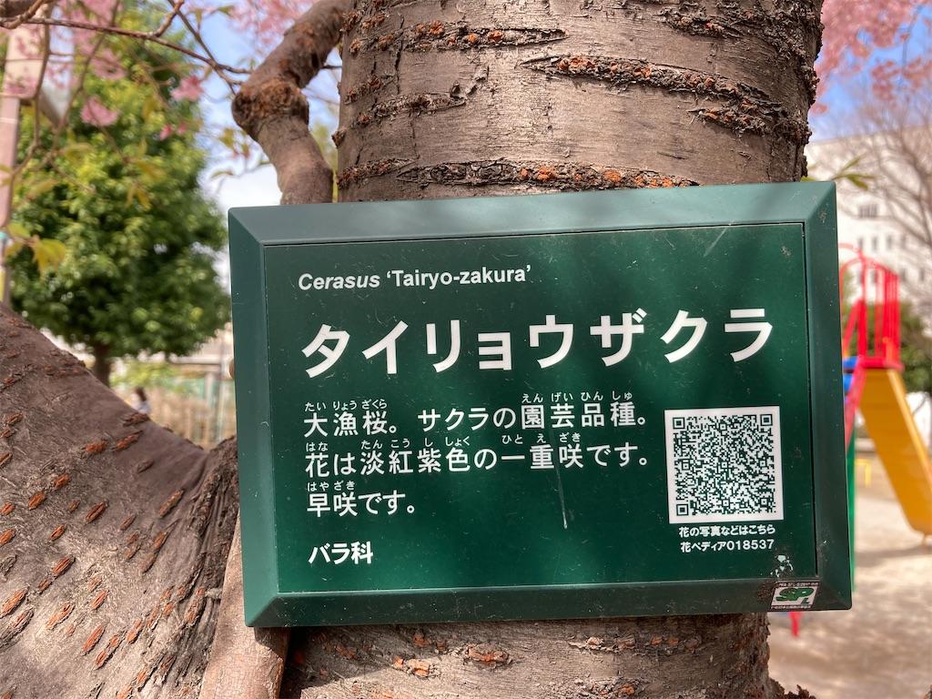 f:id:kofunmeguri:20210305120310j:image