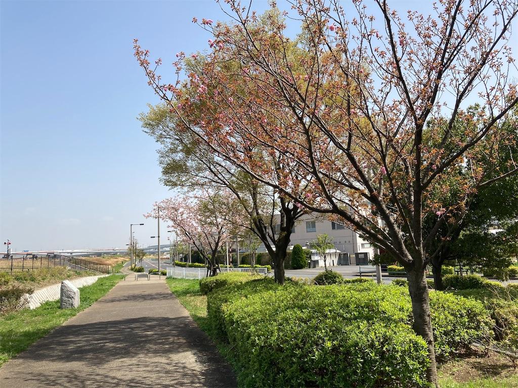 f:id:kofunmeguri:20210331185239j:image