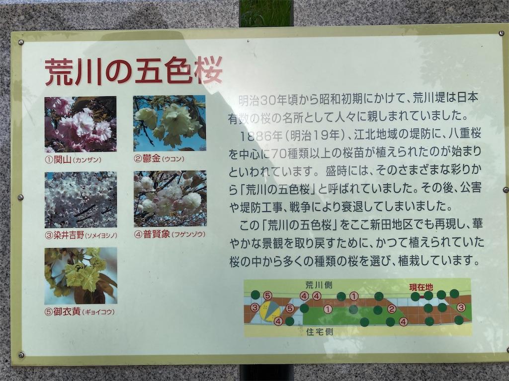 f:id:kofunmeguri:20210331185244j:image