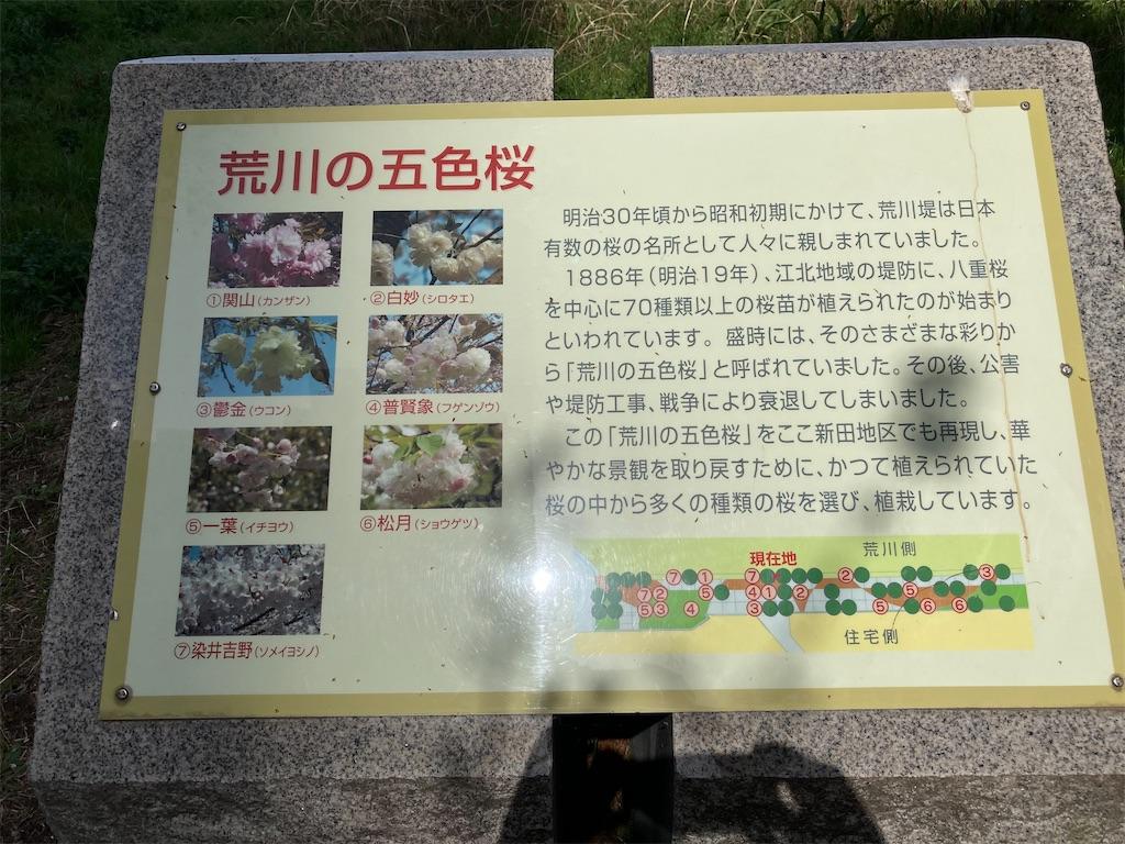 f:id:kofunmeguri:20210331194804j:image