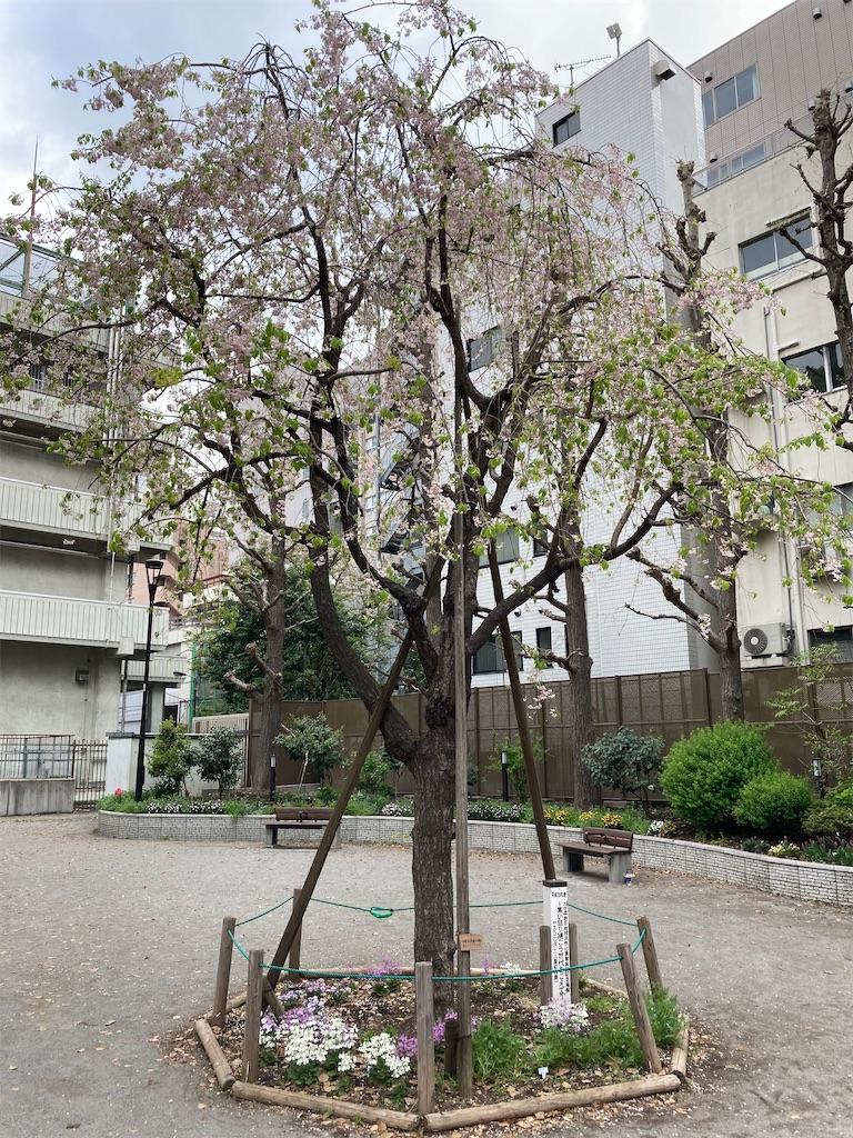 f:id:kofunmeguri:20210401203721j:image