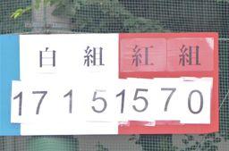 f:id:kogakuin-jsh:20180612175701j:plain