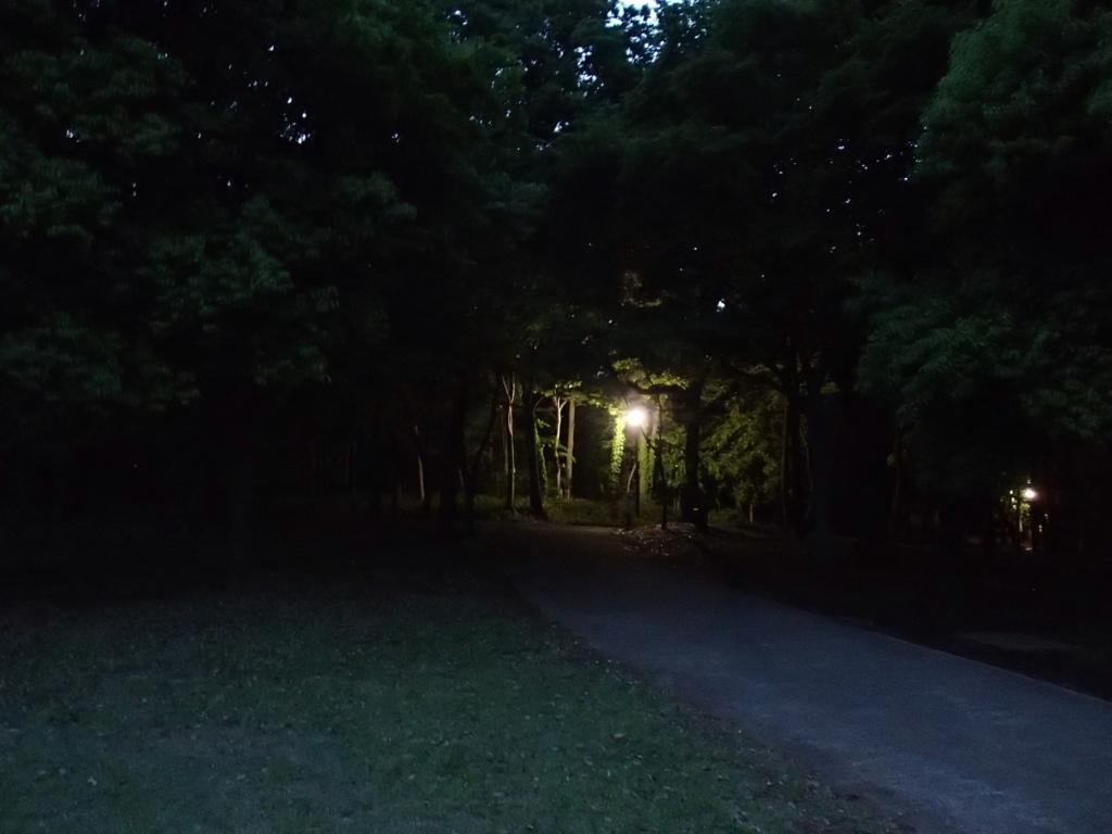 f:id:koganeisyobou:20170520130516j:plain