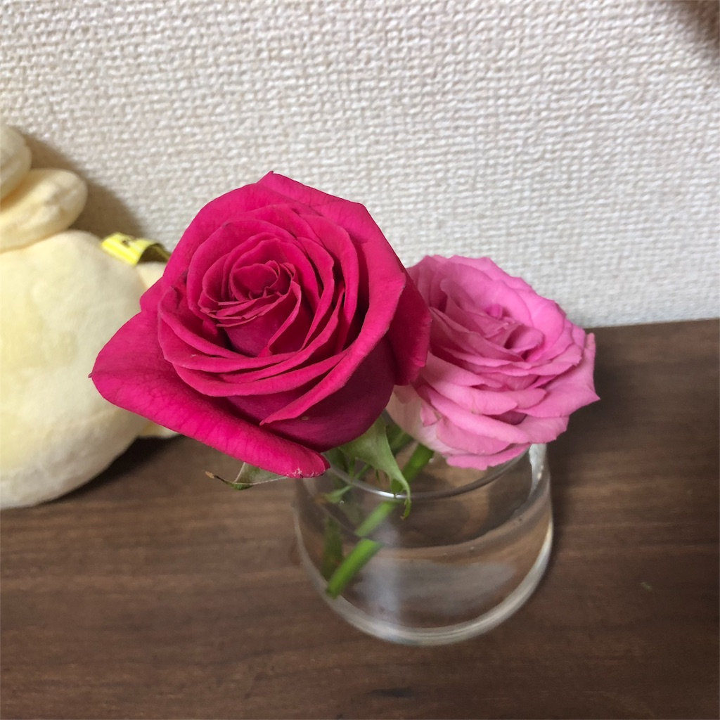 f:id:koganosu:20180620202029j:image
