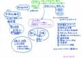 岡田尊司『境界性パーソナリティ障害』