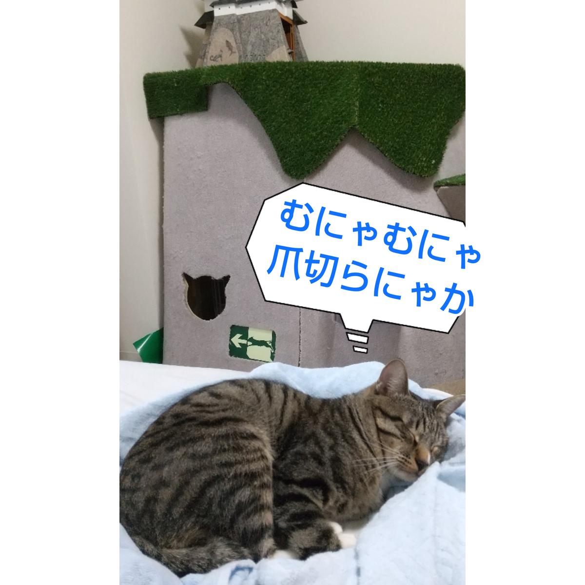 f:id:kohanakotaro:20201018142145j:plain