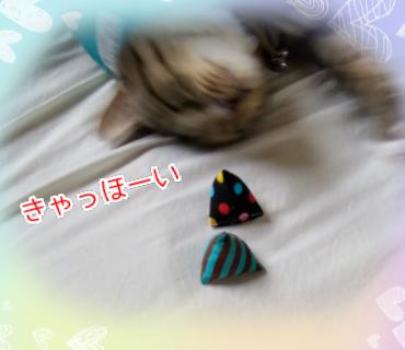 f:id:kohanakotaro:20210430123157p:plain