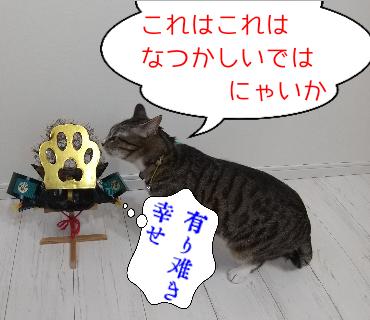 f:id:kohanakotaro:20210505174018p:plain