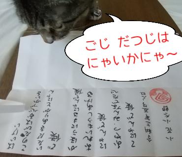 f:id:kohanakotaro:20210508090033p:plain