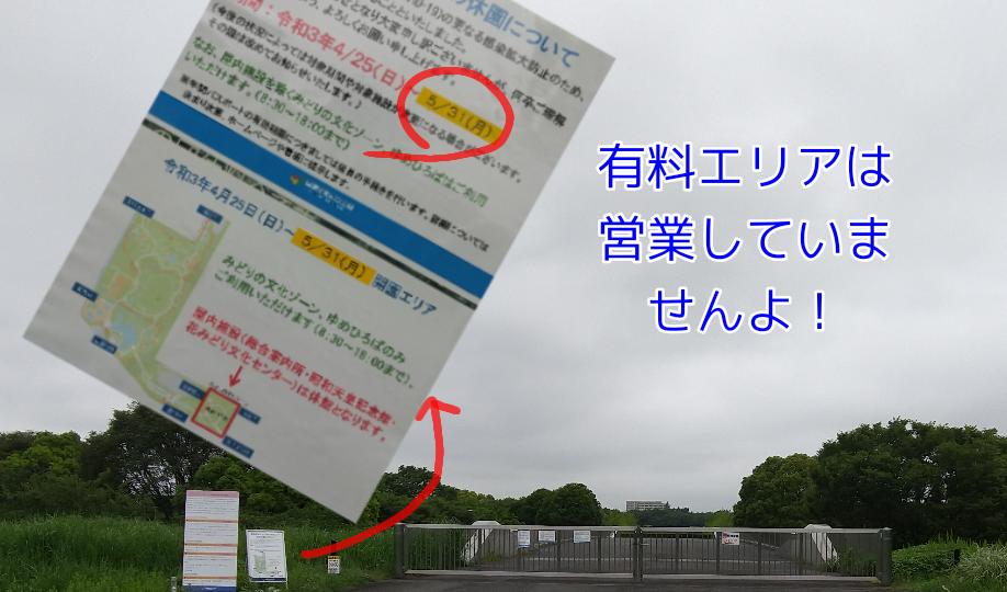 f:id:kohanakotaro:20210520040504p:plain