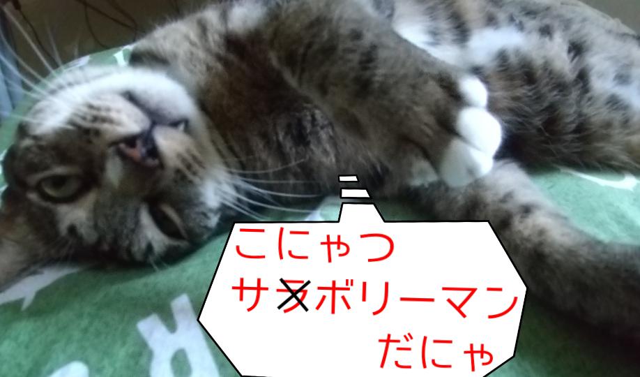 f:id:kohanakotaro:20210612131809p:plain