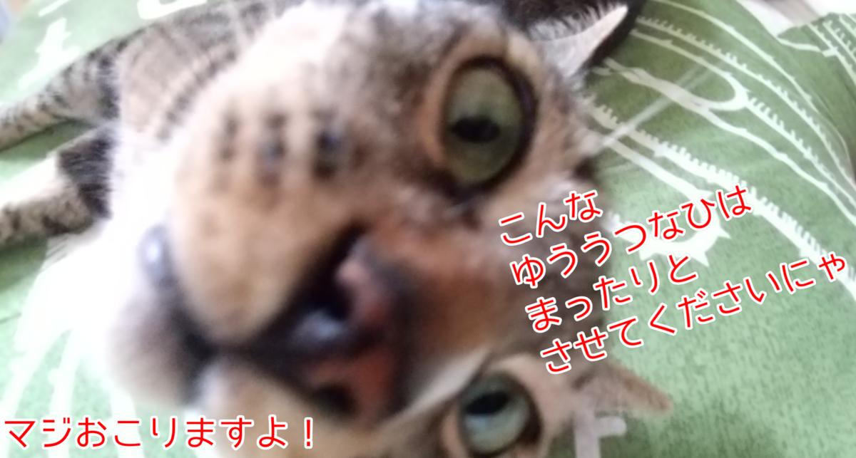 f:id:kohanakotaro:20210627171634p:plain