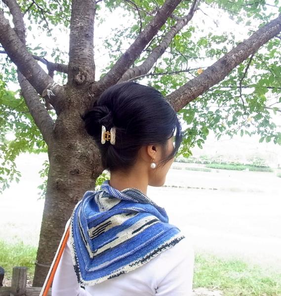 f:id:koharagi_takochan:20121015165051j:image:w360