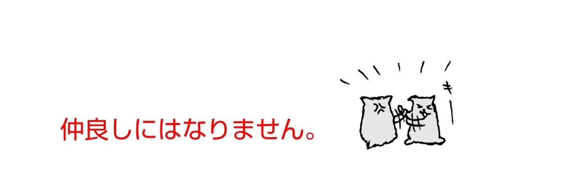 f:id:kohdyun:20210309201104j:plain