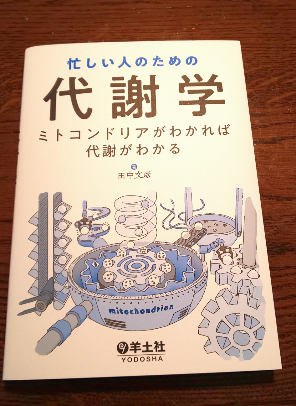 f:id:kohei1064:20200621163154j:image