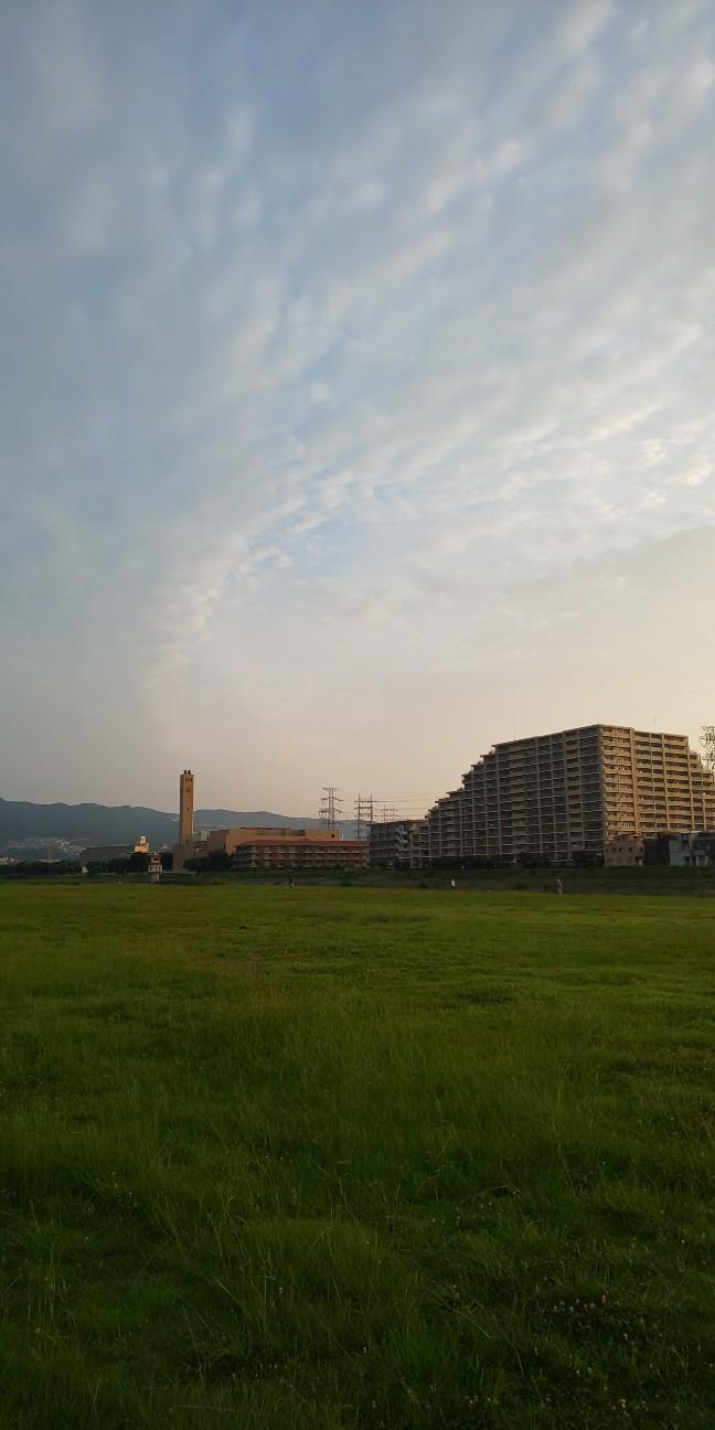 f:id:kohei1064:20200803234126j:image