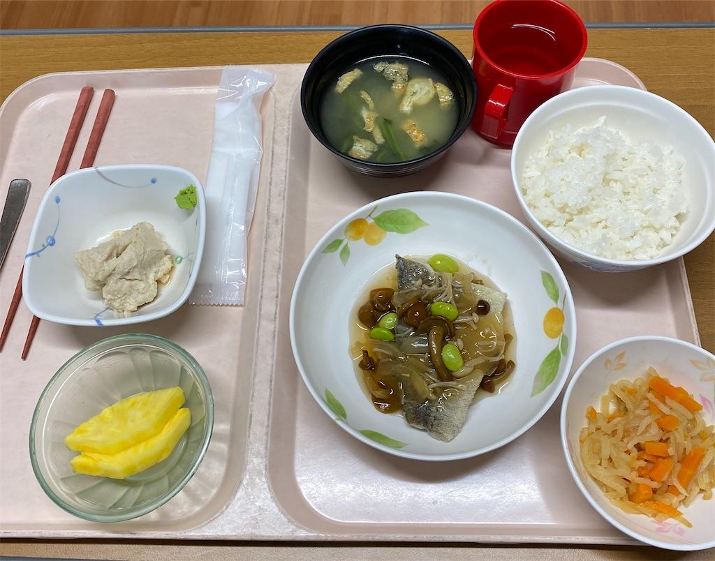 f:id:kohei1064:20210328135954j:image