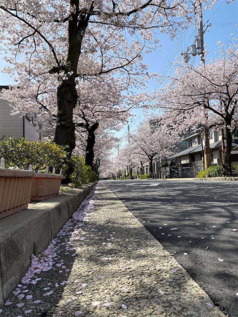 f:id:kohei1064:20210331132257j:image