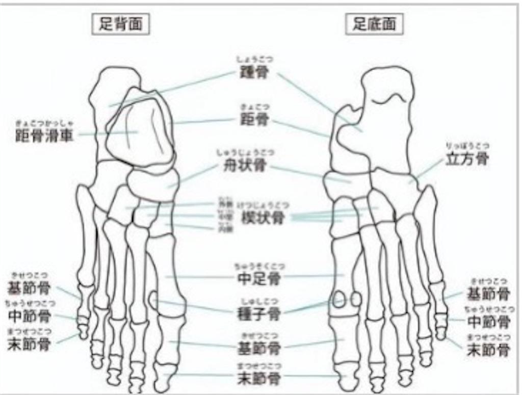 f:id:kohei1064:20210927133042j:image