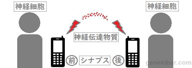 f:id:kohei_nagura:20181216162211p:plain