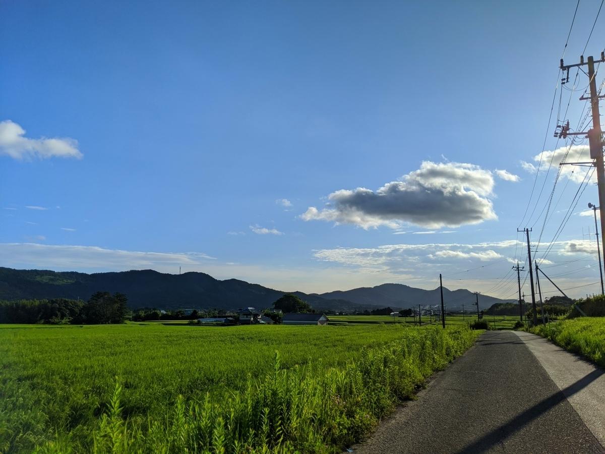 f:id:kohei_tourist:20200809161353j:plain