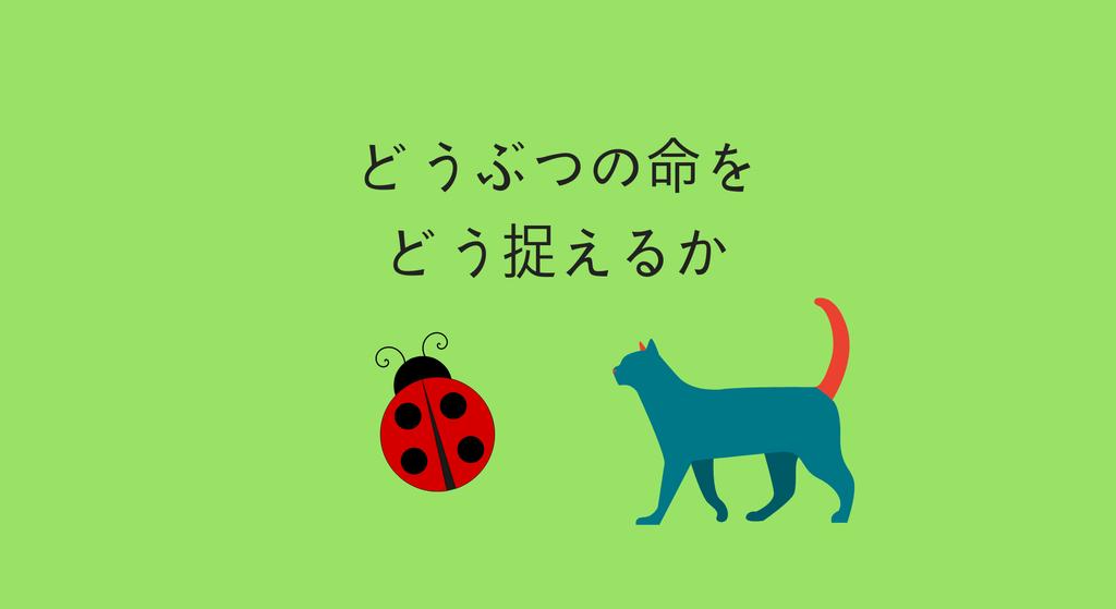 f:id:kohokushogi:20181111002404p:plain