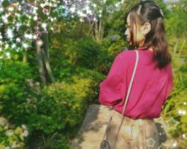 f:id:kohokushogi:20190114001951p:plain