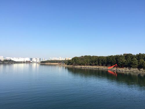 大井埠頭中央海浜公園