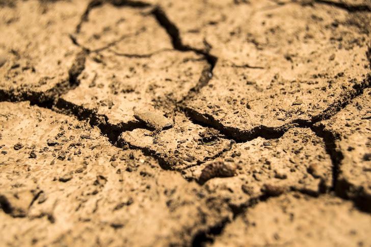 乾いた切った土