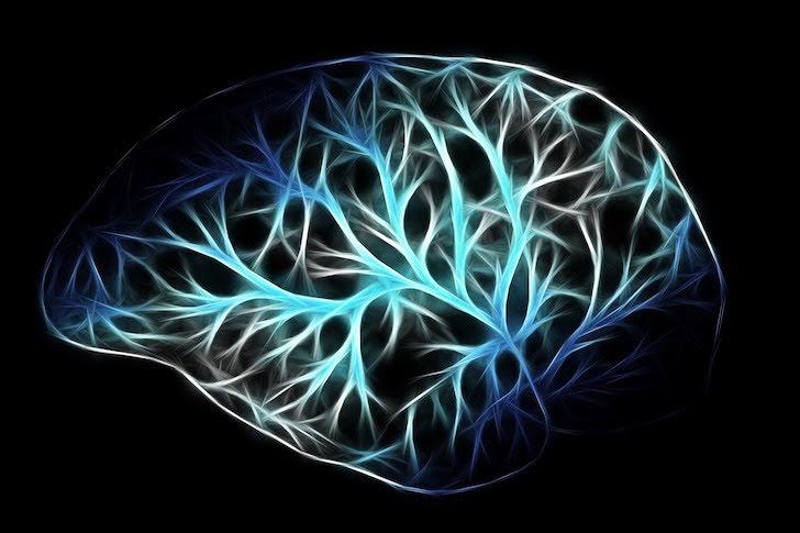 緑色の発光色で描かれた脳