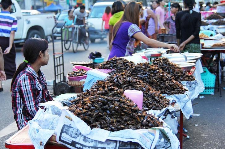 タイにある虫の油揚げの屋台