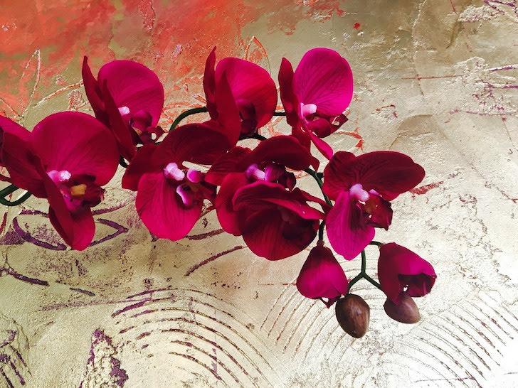 真っ赤に色付いたランの花