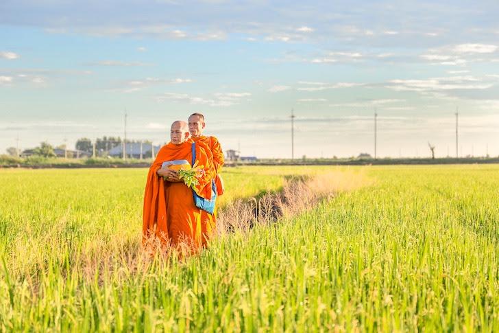 あぜ道を歩くタイの僧侶