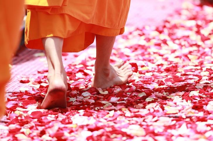 花びらの上を歩くタイの僧侶