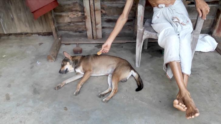 眠っている犬の背中にお菓子を置こうとする男性