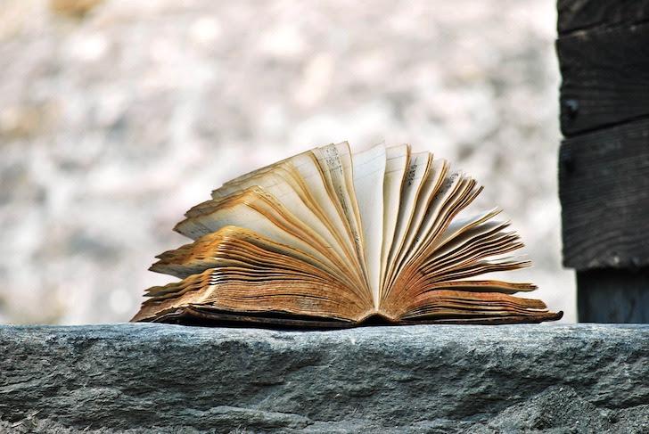 風で開いた古びた書籍