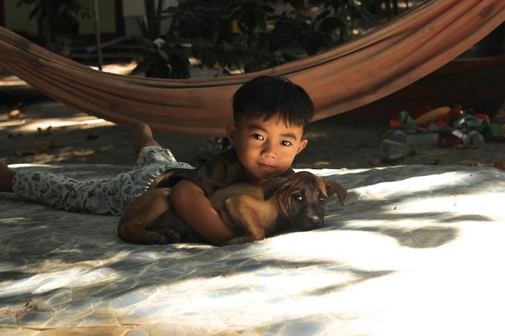 子犬を抱きしめるタイの子ども