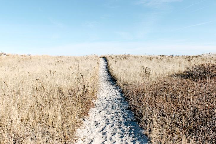 草っ原を真っ直ぐに横切る一本道