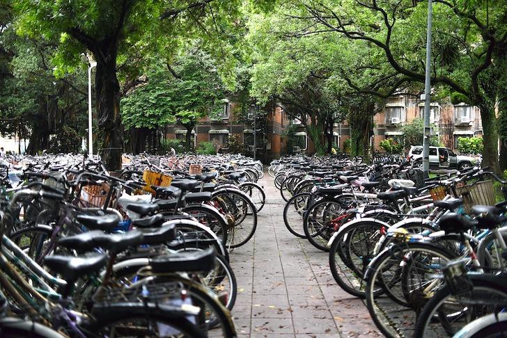 駐輪場に並べられた多数の自転車