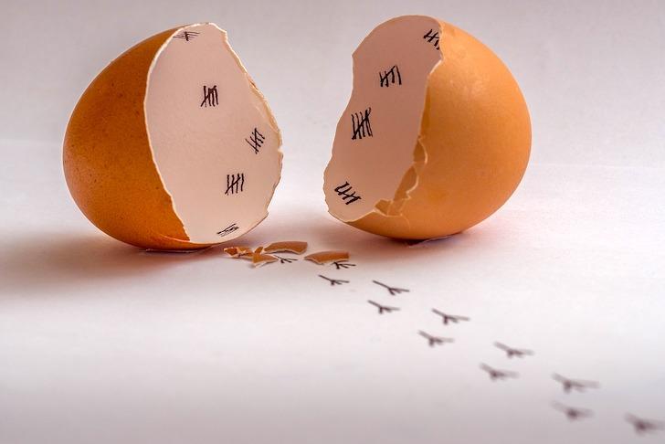 卵の殻を使ったアート