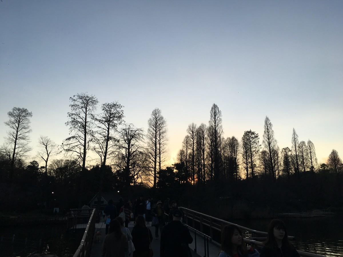 f:id:koichi_k:20190311172056j:plain
