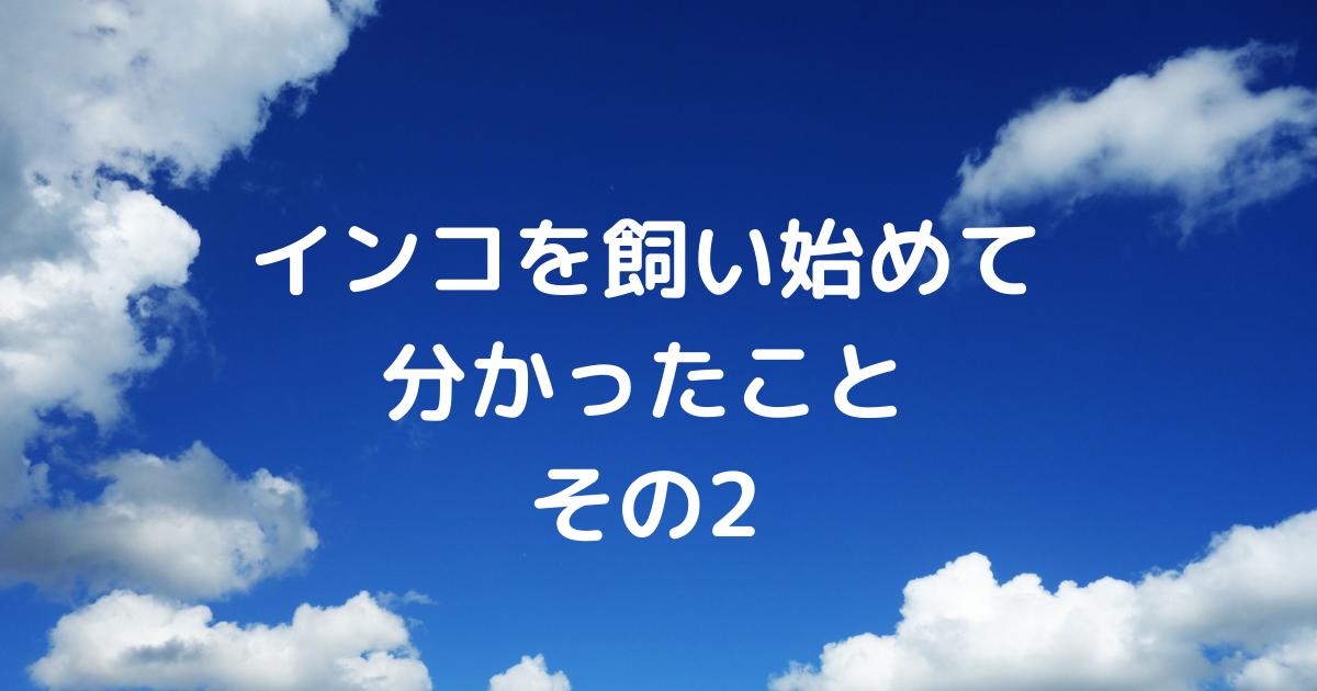 f:id:koichobi:20210319092859p:plain