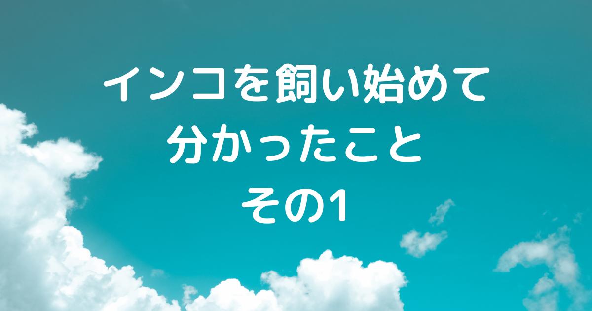 f:id:koichobi:20210319155216p:plain