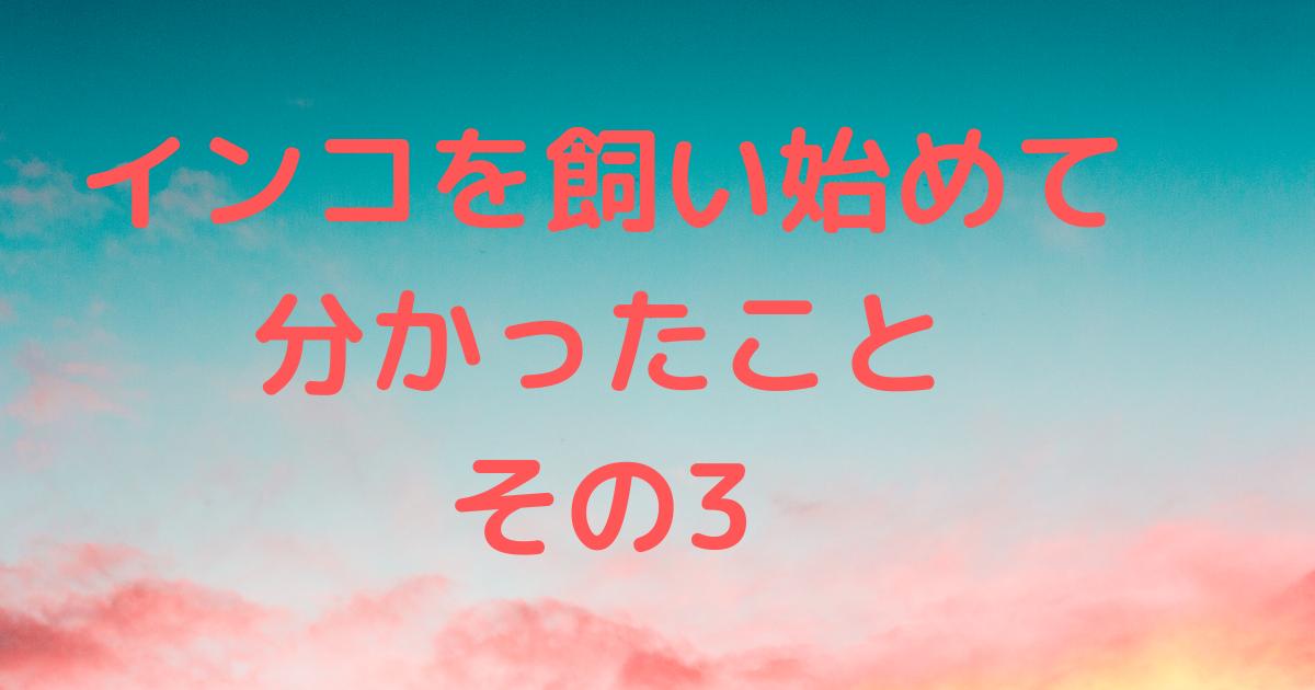 f:id:koichobi:20210327153419p:plain