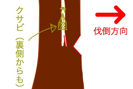 多幹木の切り方