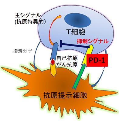 f:id:koike-jin-hitoshi:20161211225704p:plain