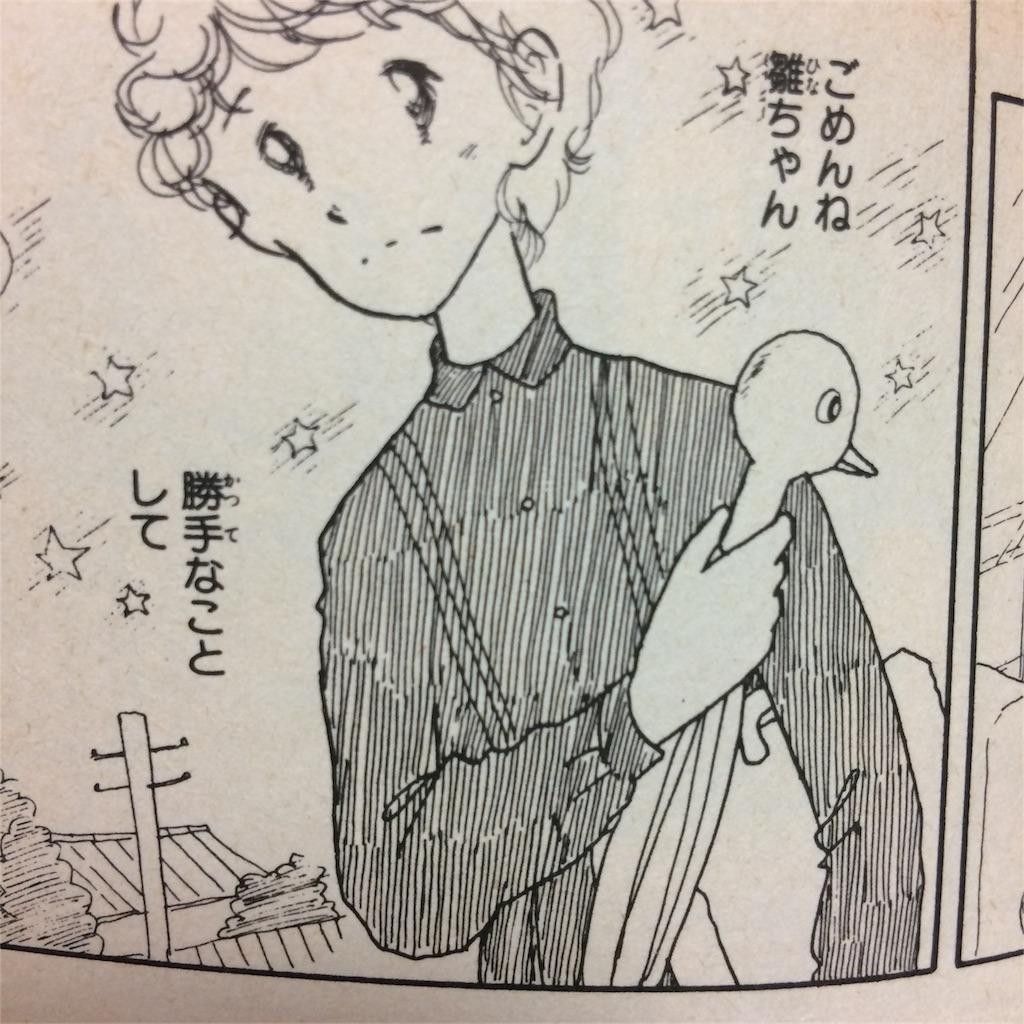 f:id:koikeyasuko:20170303225142j:image